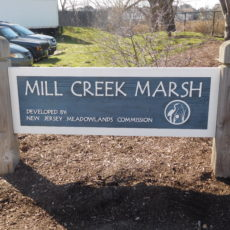 Mill Creek Marsh Trail